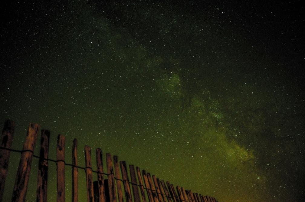 Unsplash-green-stars